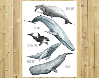 Poster whales, A4 or A3 sheet, watercolor illustration Posters