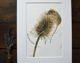 Original Art - Acrylic Painting - Wildlife Art - Field Mouse