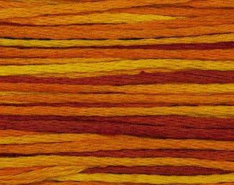 4131 Fiesta - Weeks Dye Works 6 Strand Floss