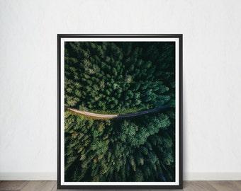Forest Digital Art Print,Poster, Art Print, Digital Art, Digital Art Print, Digital Artworks, Digital Print Art, Digital Art Download