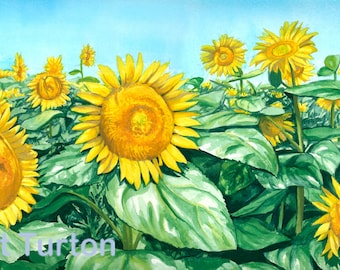 Sea of Sunflowers print, mounted and signed