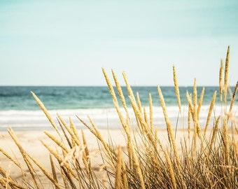 nautical decor coastal decor beach print sand dunes grass abstract beach art beach photography coastal print beach house decor aqua gold