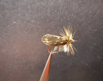 Tent-Wing Caddis Fly (6 flies)