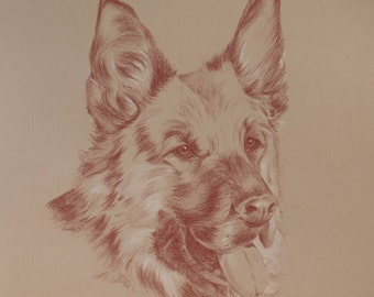 Pet Portrait, Animal Drawing, Sanguine, Pastel, Pencil, Personalised Custom Portrait, Hand-drawn by Portrait Artist : Cat, Dog, Horse, Pet