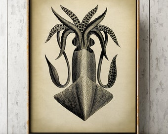SQUID Poster, Cuttlefish Print, Marine Decor, Nautical Art, Seal Life, Marine Life Print, Beach Home, Coastal theme, unframed wall art