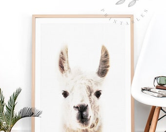 Llama Wall Art, Llama Wall Decor, Llama Wall Hanging, Llama Wall Print, Llama Print, Llama Printable Llama Download Llama Printable Wall Art