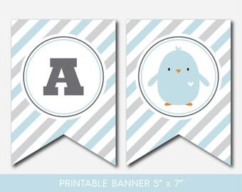 Chicken banner, Bird banner, Ready to hatch banner, Bird banner, Chicken bunting, Chicken garland, Bird garland, Bird pennant, BC1-19