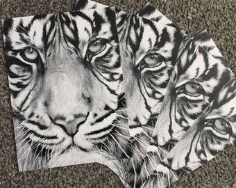 Tiger Drawing Print