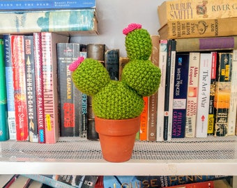 Blooming Knit Cactus in Terra Cotta Pot, Stuffed Bobble Cacti
