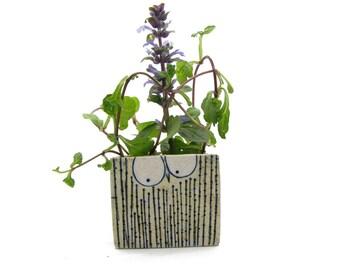 Succulent Planter, Mini Plant Pot, Rustic Planter, Ceramic Owl, Cute Animal Planter, Succulent Ceramic Pot, Rustic Centerpiece, Funny Pot