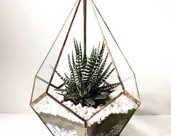 Handmade teardrop glass terrarium/ glass terrarium/ handmade terrarium/ terrarium