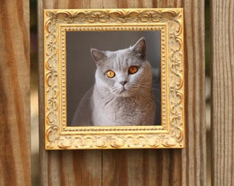5x7 Antique Gold Picture Frame 5x7 Ornate Gold Photo Frame 5x7 Rustic Gold Photo Frame 5x7 Gold Leaf Picture Frame 5x7 Gold Picture Frame