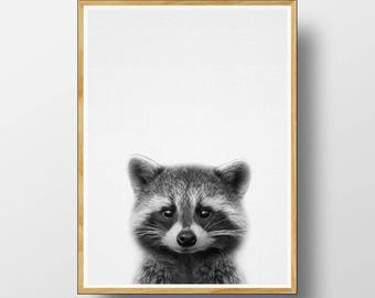 Racoon Print,  Nursery Animal, Nursery Wall Art, Woodlands Nursery, Printable Woodlands, Woodlands Decor, Nursery Woodlands, Nursery Print