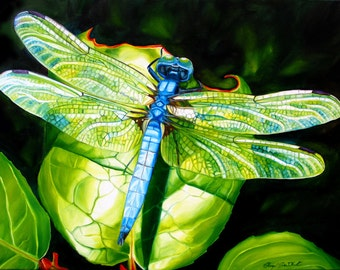 """Dragonfly print, 11x14 inch matted print from original oil painting """"Dragonfly"""" by Sheryl Sawchuk"""