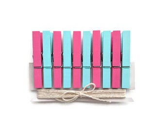Mint Blue & Pink Clothespins. Decorative Mini Clothespins. Painted Clothespins. Pink and Mint Baby Shower Mini Clothes Pin Clothespin Magnet