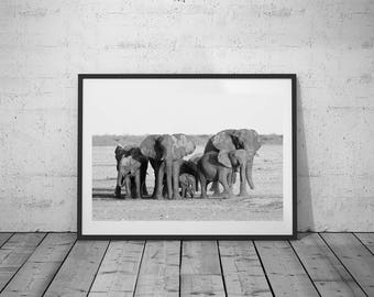 Animal Photography, Wall Art Decor, Elephant Photo, Black-White Photo, Printable Poster, Digital Download, 5 JPG's