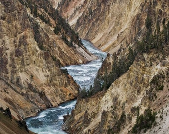 Blank Cards (Set of 5), Grand Canyon of Yellowstone