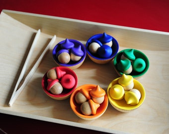Back to School / Set of Rainbow Sorting Acorns, Bowls & a Tong /Educational Toy / Waldorf Wooden Toy / Montessori Toy