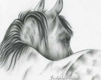 "Charcoal Horse Drawing Print, 8""x10"" White Horse Art, Silver Dapple, Horse Sketch, Equine, Horse Drawing, Charcoal Horse, Wild Horse Art"
