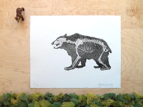 Artículos similares a Esqueleto del oso - oso grabado - huesos de ...