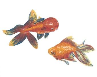 Iron on Fabric Appliqué set - 2 Pet Goldfish Fish Orange Fancy DIY No Sew Patch
