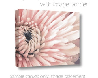 Flower Wall Art-Cottage Chic Wall Decor-Floral Photo Canvas-Fine Art Photograph-Chrysanthemum-Salmon-Living Room Art-Guest Room Wall Decor