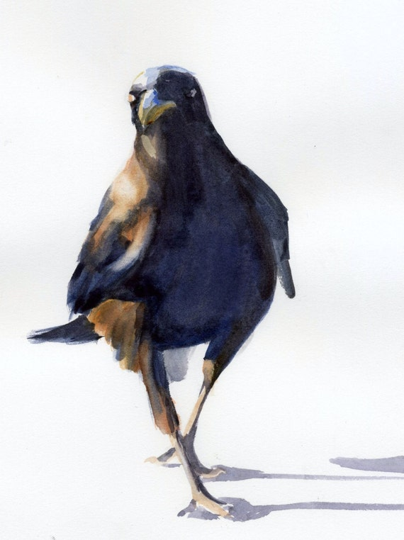 Confident Crow -- signed watercolor print - Bonnie White - crow print - raven print - B White Ravens - Columbia Gorge Artist - Art