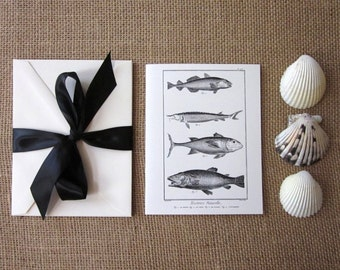 Fish Note Cards Set of 10 with Matching Envelopes