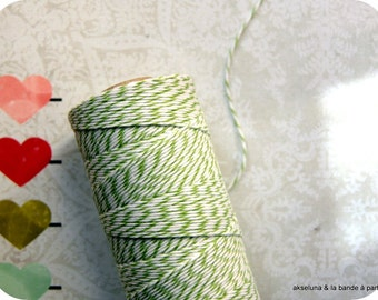 Twine Baker's Twine fine - green/white - 10 m ep.1mm