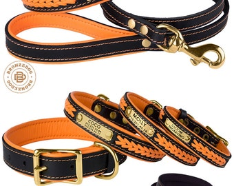 Dog Collar Leash Set Orange Leather Custom Personalized Brass Hardware Soft Padded