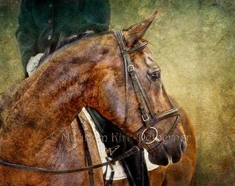Dressage horse decor horse wall art print horse lover gift for her horse large art print show horse print horse art