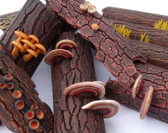 Polymer clay tutorial - Polypores on bark