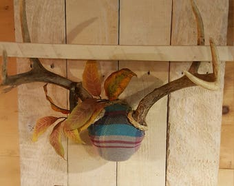 Rustic looking shelf with whitetail deer antlers and vintage posted sign on whitewashed reclaimed wood