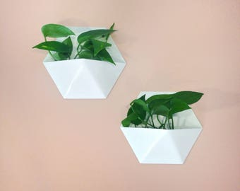Set of Two Standard Hexagonal Honeycomb Indoor/Outdoor Succulent Wall Planter, White Powder Coated Finish -Deep