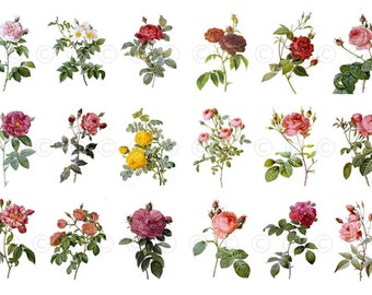 Rose Flowers Water-Slide Decals, Decorate Flame-less Candles, Soap, Glass, Home Decor, Furniture, Magnets, Wedding Crafting, Scrapbooks