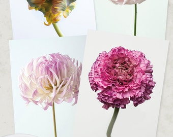 Flower Photo Notecard - Flower Collection of Tulip, Rose, Dahlia, Ranunculus, Note Card, Floral Photo Notecard, Stationery, Blank Notecard