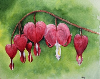 Valentine Flowers -  Gardens - Bleeding Heart - Watercolour Painting - Jane Kay - Fine Art - Gardens - Love - Romance - Gifts for Her -