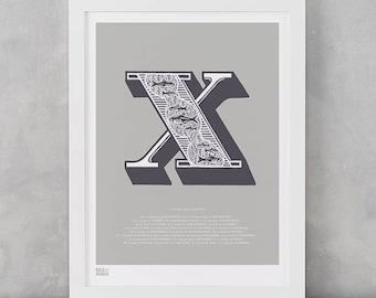 Illustrated Letter X, Letter X, Illustrated Alphabet Wall Poster, Illustrated Letters, Illustrated Alphabet, X, Letter X Art Print