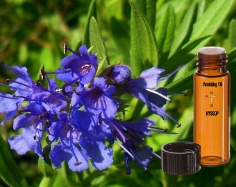 Hyssop Anointing Oil
