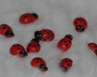 Set of ten 3D decorated wooden ladybugs