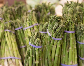 Green Asparagus, food photos, asparagus bunch, kitchen decor, vegetable photo, green, purple, cafateria photo, vegetarian photo, home decor