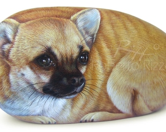 Custom Dog Portraits Hand Painted on Natural Sea Stone | Fine Detailed Pet Memorial Painted Rocks by the Artist Roberto Rizzo