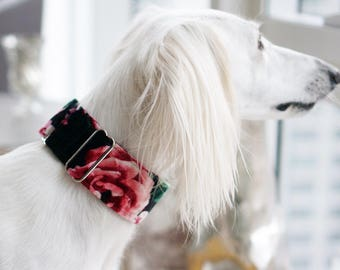 ENCHANTED - Special occasions martingale collar, Fancy sighthound collar, Greyhound collar