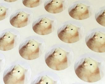 """Chicks in Hats Miniature Bridal Veil Stickers Chicken Bride Stickers 1.5"""" Round (12) Engagement Wedding Seals"""