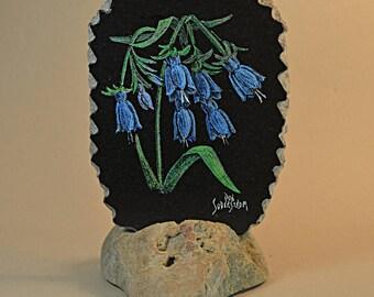 Bluebell flowers on black granite tile
