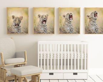 BABY LEOPARD  Nursery and Children's Room Decor: African Safari Photo, Baby Animal Photo, Print, Digital Download, Wall Art, Safari Animal