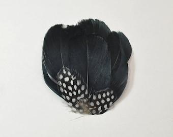 Guinea Goose Feather pad - Black