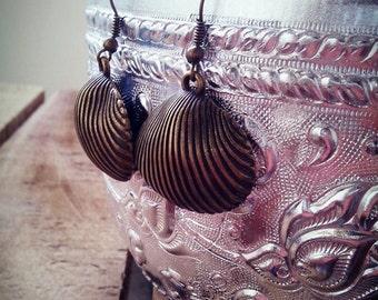 Lovely Bronze Shell Earring