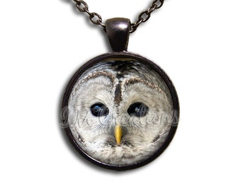 Barred Owl - Round Glass Dome Pendant or with Necklace by IMCreations