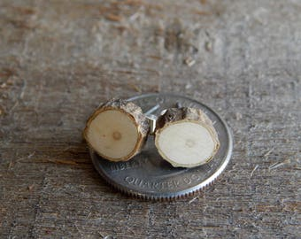 MINIATURE Rustic Holly Twig Wooden Stud Earrings by Tanja Sova